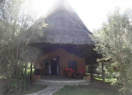 フラミンゴ ヒル キャンプ 写真