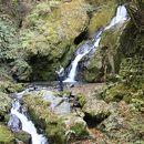 梅ノ木轟の滝