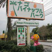 観光バスが寄るパイナップル専門店です