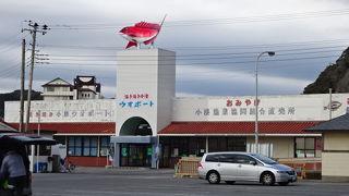 活きた魚や貝、海老が販売されています。