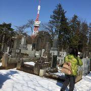 日本一の地平線が見えるタワーです。