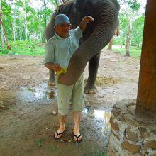 ゾウには有料ですがバナナをあげれます。もちろん乗ることも…