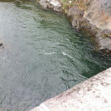 「新橋」から飛び込むポイントを撮影。ポイントは狭い。