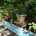 カラン植物園&トレイル