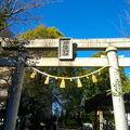 写真:物部神社