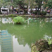 鯉がいる池