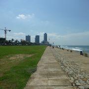 海岸沿いの芝生
