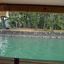 萩八景遊覧船から見た岸辺の風景です。