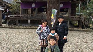 熊野大社 夏越祭