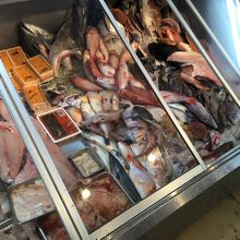 ショーケースからも好きな魚を注文可能