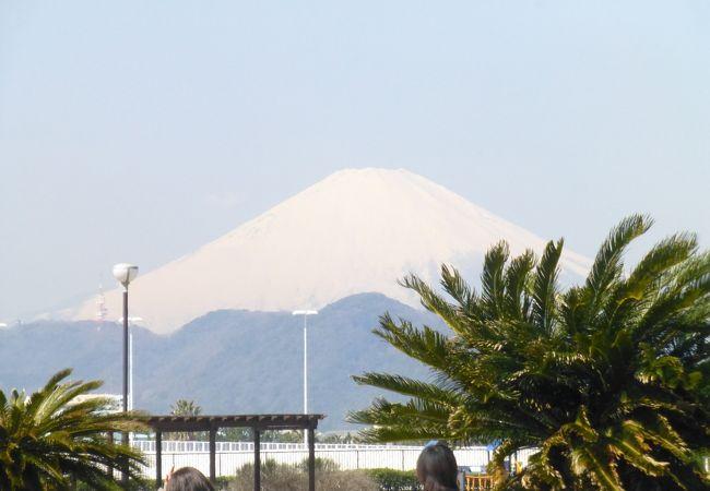 柳島しおさい広場