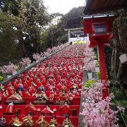 ビッグひな祭りの写真が有名な神社