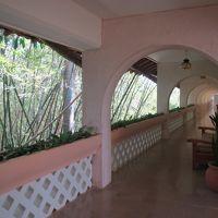 廊下側も結構な作り 竹林に隣接