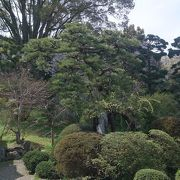 綺麗に手入れされたお庭が印象的