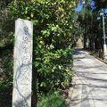 写真:東海道自然歩道起点の碑