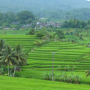 癒される田園風景