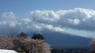 富士河口湖さくら祭り
