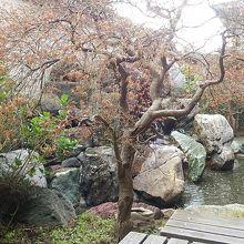 建物内の庭園