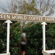自然栽培のフレッシュコーヒー