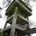 写真:桜山展望台