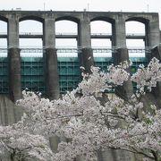 桜飾りのダム