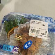 農海産物が安い‼?