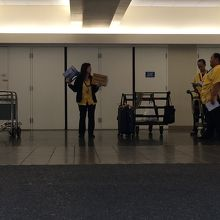 黄色のシャツでお出迎えです