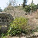 やはた川自然公園
