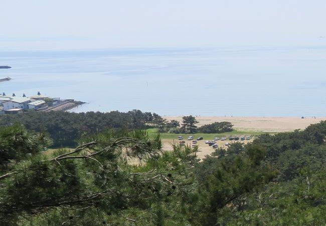 変化に富んだ松の景観が楽しめます