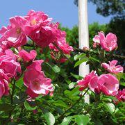 バラ園や日本庭園もありちょっとした散歩も楽しめます。