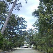 島尾海岸公園