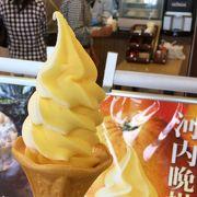 ソフトクリームが美味しかったです。