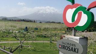 弘前りんご花まつり