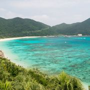 阿波連ビーチの全景を堪能(渡嘉敷島)