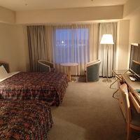客室です。広さは充分に有ります。質は値段相応です。