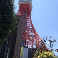 寺から東京タワーを望む
