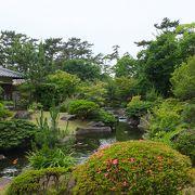 日本庭園がメインの公園