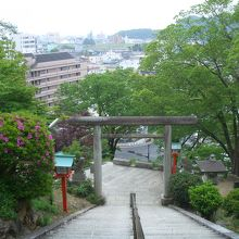 織姫神社の階段を上がって