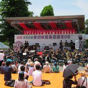 平成28年6月イベント、菖蒲開花時期の水元公園で楽しめました