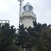 佐田岬の先端に建つ灯台までのウォーキングを楽しめます