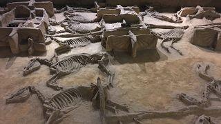 周王朝時代の王が乗った馬車と馭者が発掘された場所