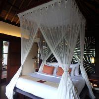 ベッドは天蓋付きで安心です