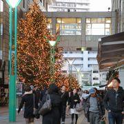 Crystal Green Tree   パサージュ広場のクリスマスデコレーション