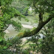 肱川の美しい背景がよく見えないのは惜しい。。。