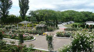 八戸公園(植物園)