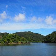 西表島の自然を満喫!