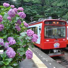 日本有数の登山電車