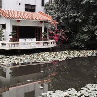 中庭には大きな池