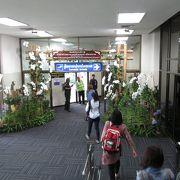 チェンライ国際空港の国内線ターミナルに到着