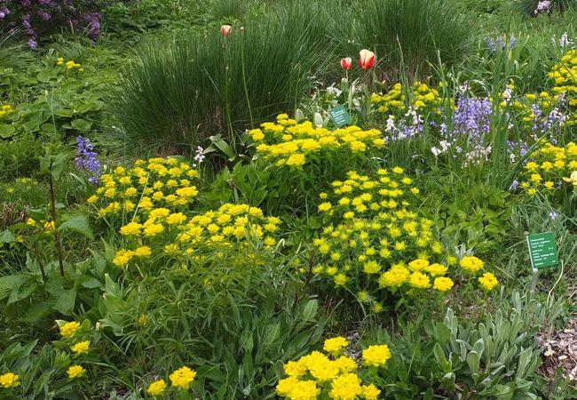 ヘルマンスホーフ園芸庭園